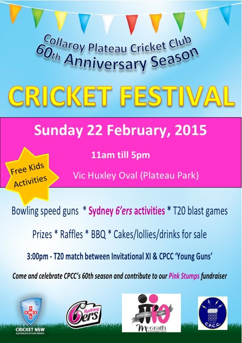 cricket-festival-flyer